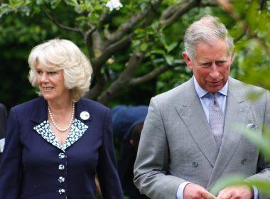 Prince Charles   CC   Andy Gott   https://flic.kr/p/6tobaM