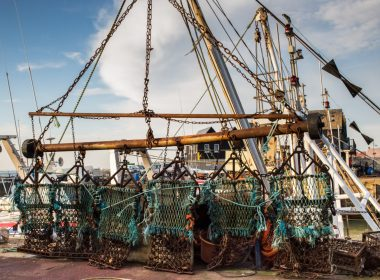 Illegal fishing claims after 112 boats seen in Scotland's protected waters 13