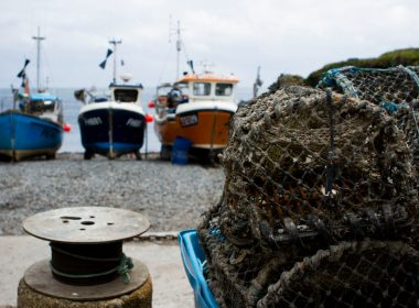 Scallop dredgers accused of sabotaging creel fishing gear 10