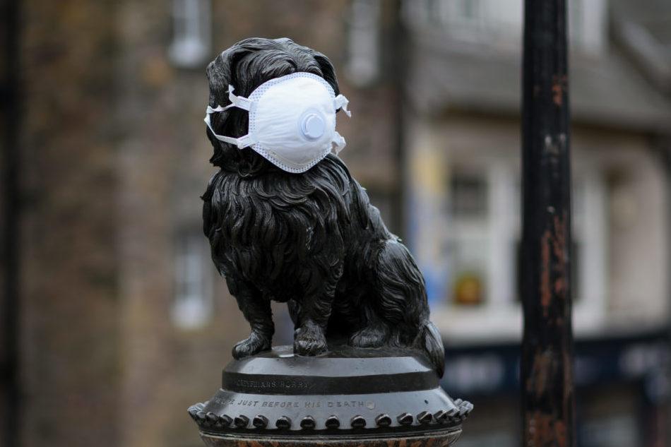 covid-19 greyfriars bobby mask