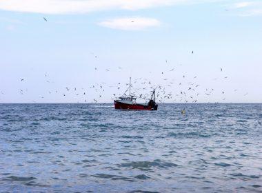 Fishing trawler at sea