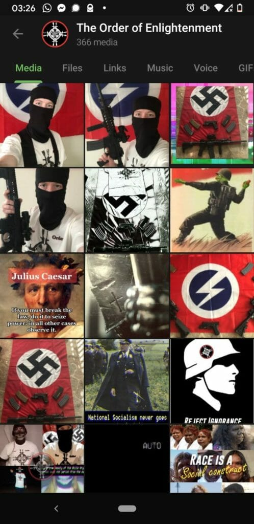 Screenshot of images uploaded to a Patriotic Alternative group