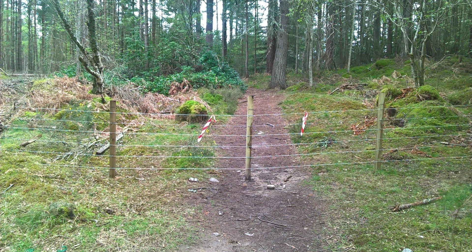 Moray estate 'illegally' blocking land access, says MSP 8