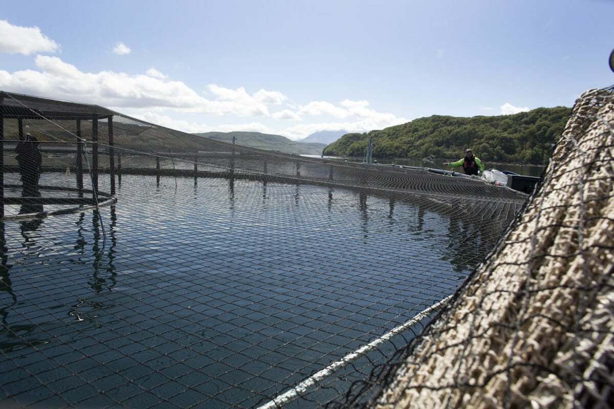 Troubled waters: communities at odds on fish farming 14