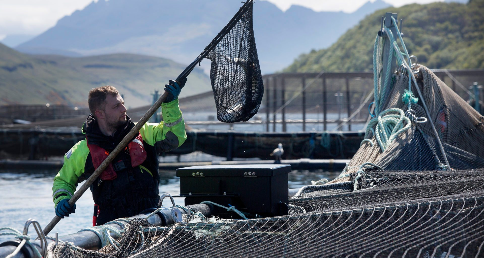Troubled waters: communities at odds on fish farming 8