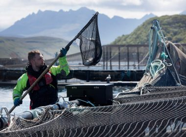 Troubled waters: communities at odds on fish farming 9