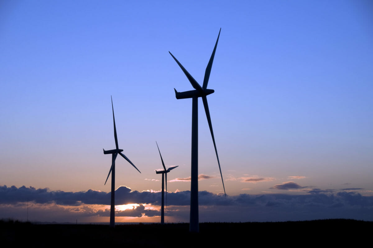 Windfall: one third of Scotland's biggest wind farms linked to tax havens 12